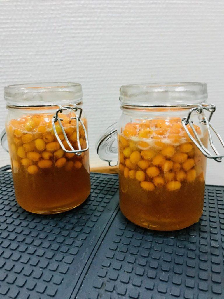 havtorn honning