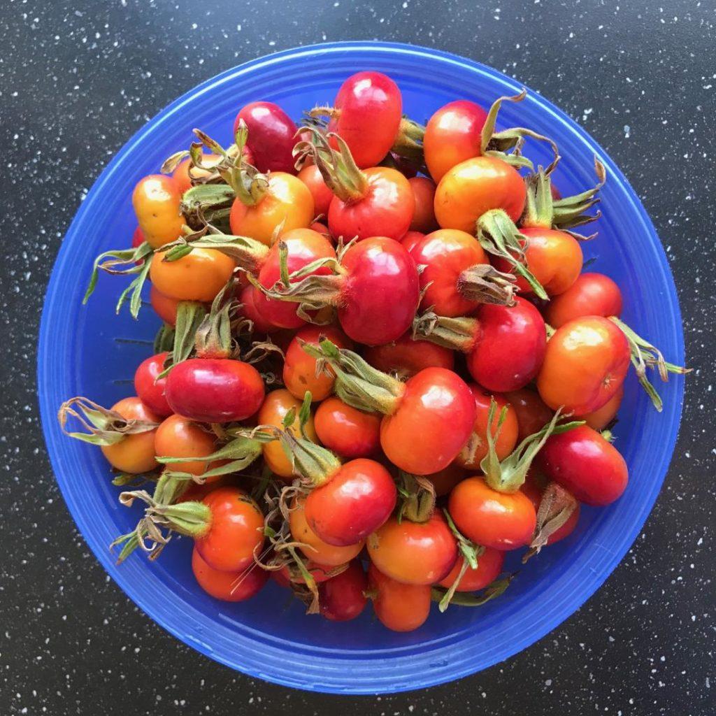 hyben marmelade